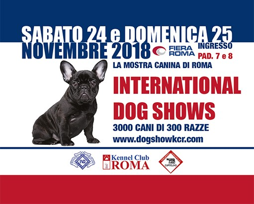 Dog Shows 2018 Fiera di Roma New special offer
