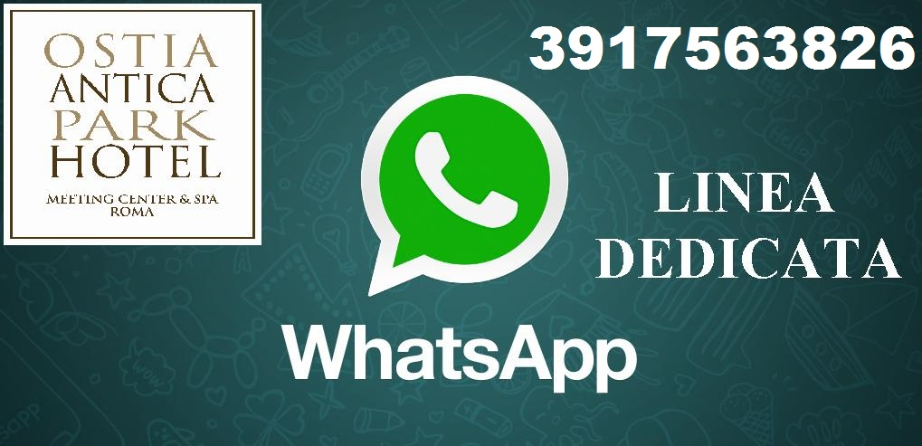 +39 3917563826 - Whatsapp Line